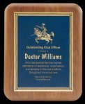 Plaque with Diamond Plate Award Achievement Awards
